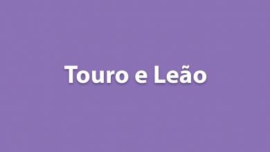 Touro e Leão