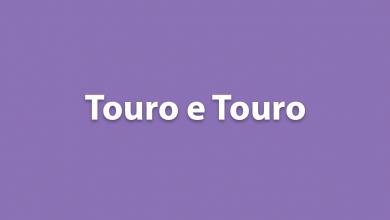 Touro e Touro