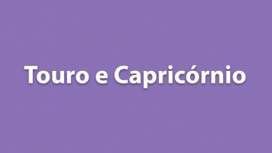 Touro e Capricórnio