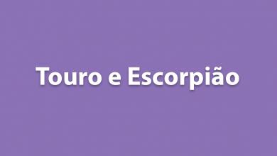 Touro e Escorpião